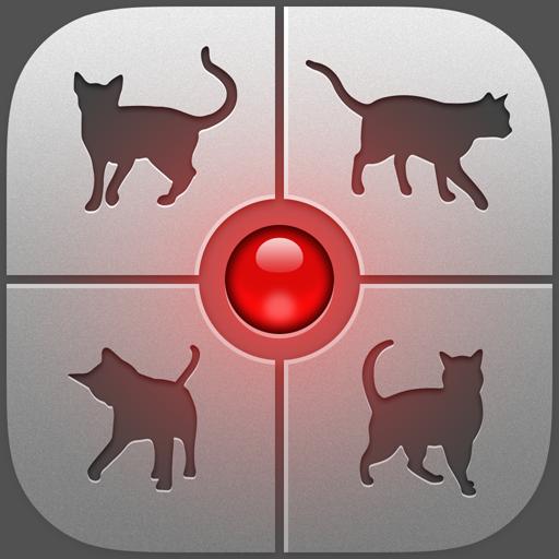 Mensch-Katze-Übersetzer